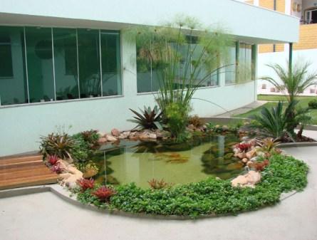 plantas-para-lagos-ornamentais-1