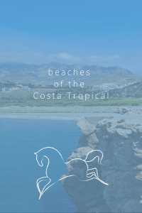 beaches of the Costa Tropical