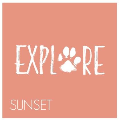 Explore paw print - Sunset