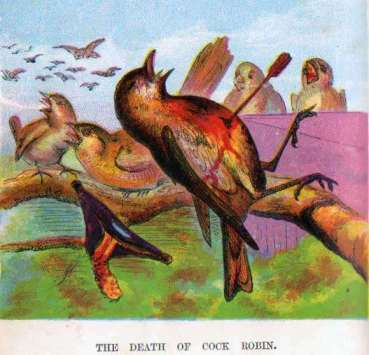 The Death of Cock Robin