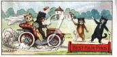 A cat bride and groom going on honeymoon in a motorcar, as drawn by Louis Wain in 1906.
