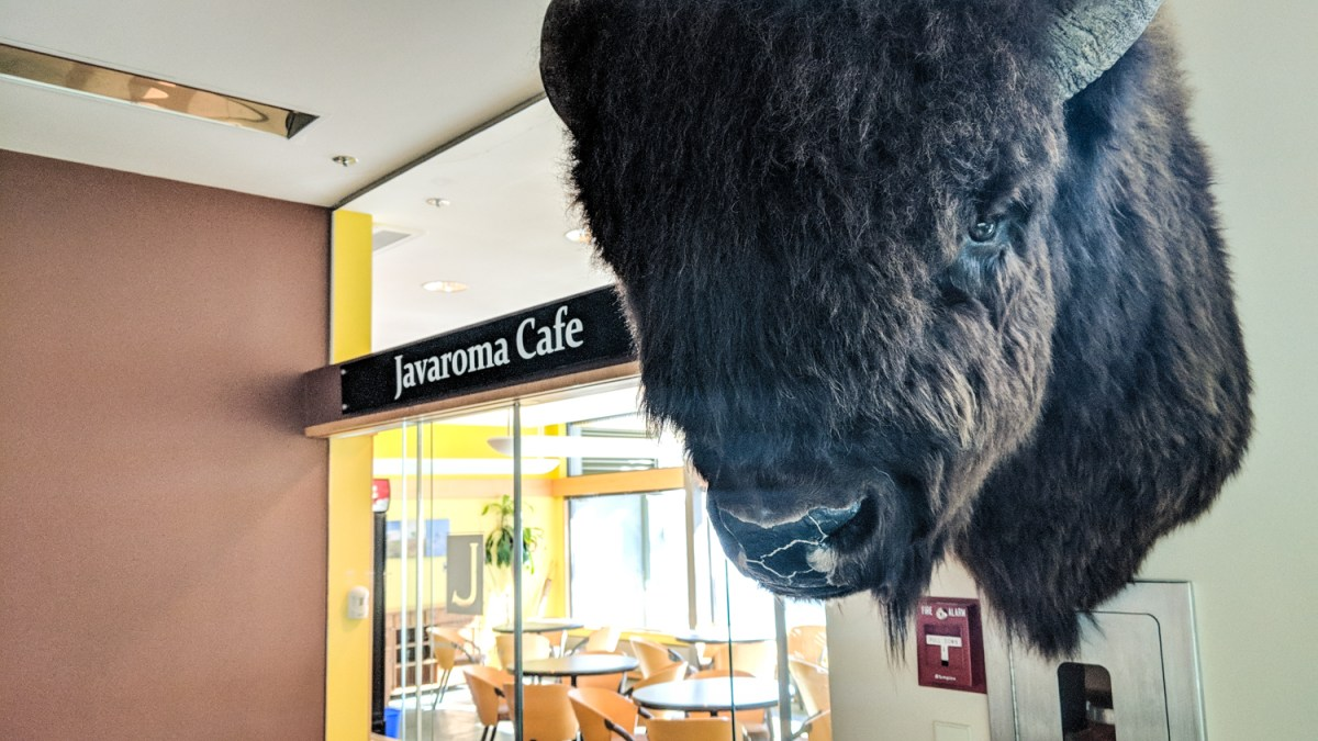 Yellowknife's Cliff Café delays opening at NWT legislature
