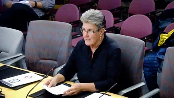 Wendy Bisaro appears at a public hearing regarding the forthcoming Ombudsperson Act in September 2018