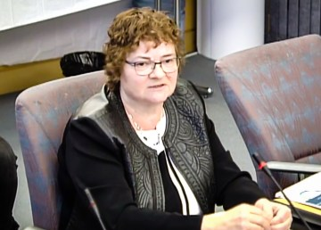 Elaine Keenan Bengts appears before a committee at the NWT legislature on January 15, 2019