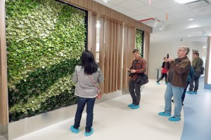 "A ""living wall"" greets people in the main atrium of the new Stanton Hospital"