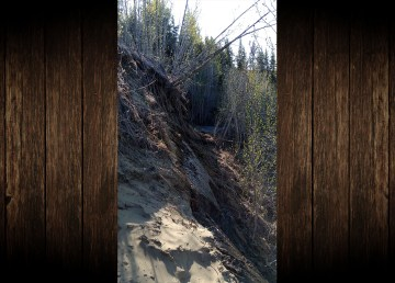A section of the Slave River riverbank collapses on the north side of Fort Smith in the spring of 2019