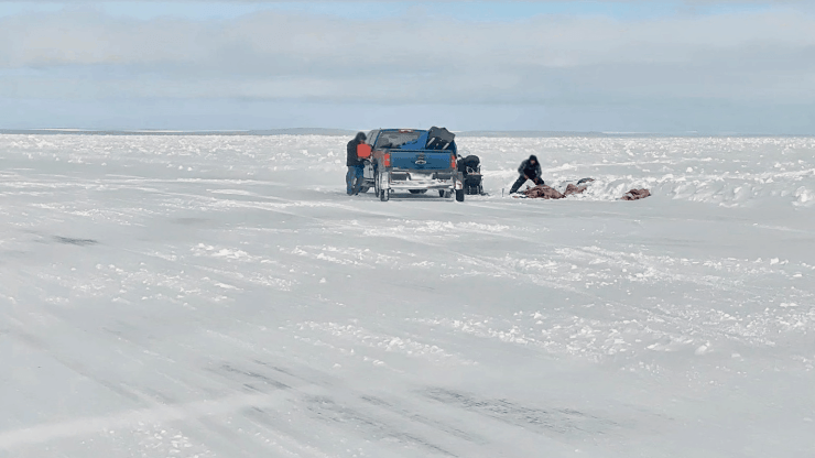 People on the ice road harvesting an animal on March 22, 2020