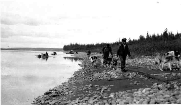 """""""Travelling with dogs and canoes"""" from the National Photography Collection held by Public Archives Canada"""
