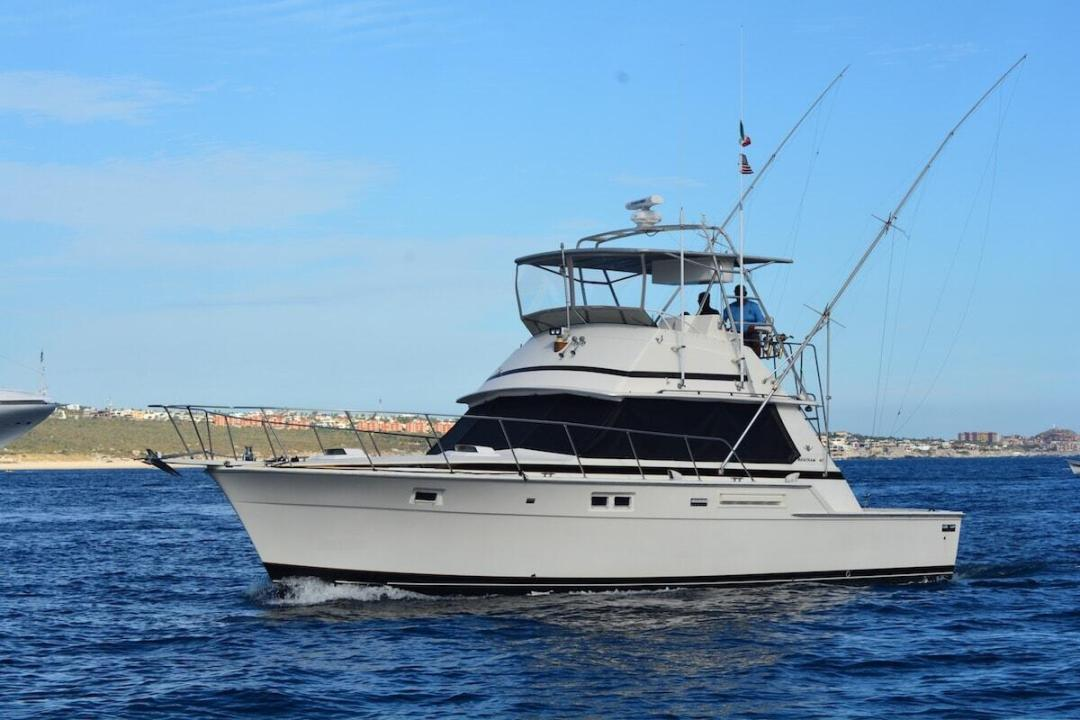 beast of burden cabo sportfishing, 42ft bertram offered with RedRum Cabo Sportfishing.