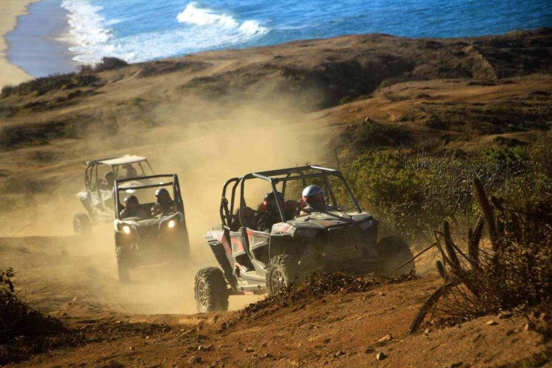 Baja Sur off road adventure cabo san lucas cactus tours best atv razor tour