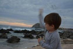 boy throwing rocks on cabo del sol beach near sunset