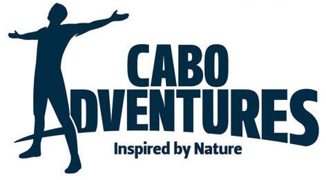 cabo adventures discounts on the best tours and activities in los cabos