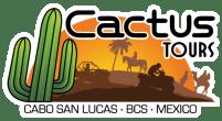 Cactus ATV Tours Los Cabos Razor tours