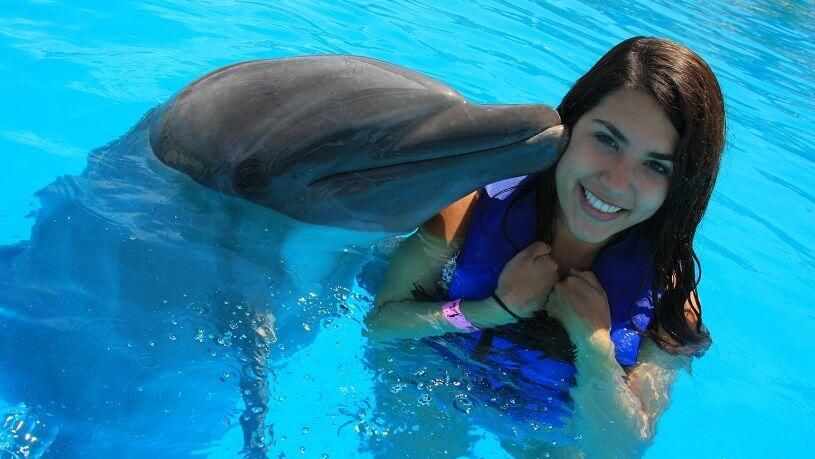 discounted Cabo Dolphin experience program with cabo adventures cabosanlucastours cabo san lucas tours