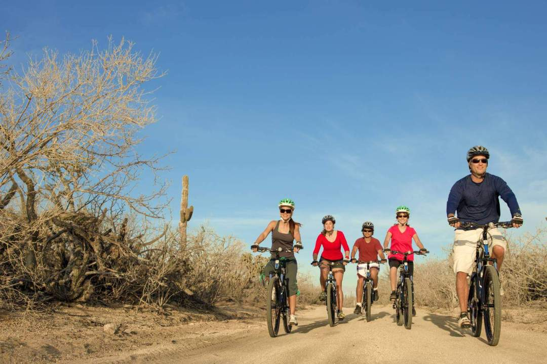 cabo adventures mountain bike tour in los cabos group ride