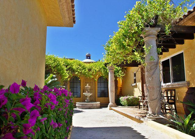 agave-azul-courtyard