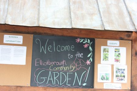 Elliotborough Community Garden