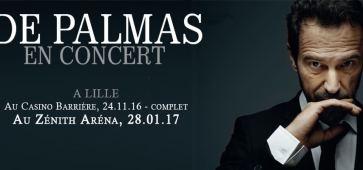 Gérald De Palmas à Lille