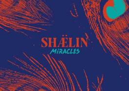 "SHÆLIN : premier single "" MIRACLES "" (RnB, neo-soul, hip-hop) cacestculte"