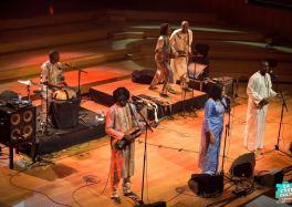 Bassekou Kouyate, le soleil du Mali embrase Flagey cacestculte ça c'est culte Bassekou Kouyaté- Photo de couverture