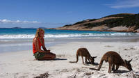 10-Day Adelaide to Perth Nullarbor Camping Adventure