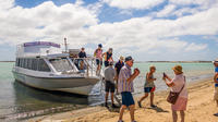 Coorong Discovery Cruise Including Transfers from Adelaide