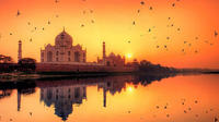 Sunrise Taj Mahal Tour with Guide and Transfers from Delhi  Hotel