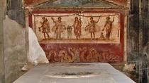 Excursão privada de meio dia para Pompeia, Naples, Private Sightseeing Tours