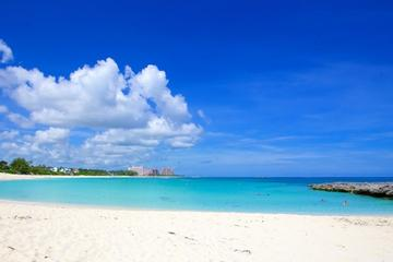private half day sightseeing and beach charter in nassau in nassau 331858
