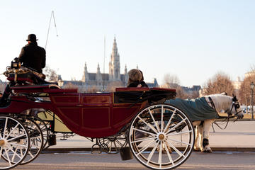 romantic vienna combo vienna card horse and carriage tour belvedere in vienna 117630