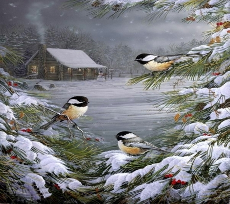 Winter Birds Winter Amp Nature Background Wallpapers On