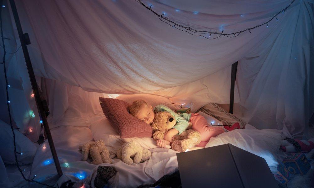 quel est le meilleur lit cabane