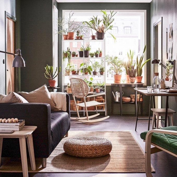 comment creer un jardin interieur