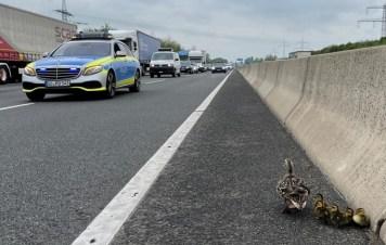 POL-GÖ: (166/2021) Polizei hilft alleinerziehender Mutter mit 5 Kindern aus gefährlicher Situation auf der Autobahn