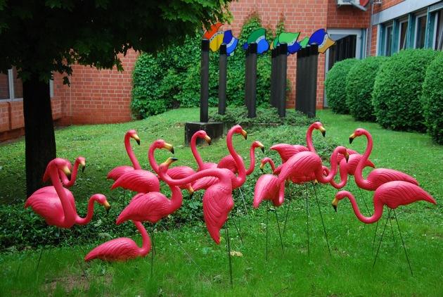 POL-GÖ: (369/2019) Jesus, Zwergwidder, Frauenkopf und jetzt Flamingos - Was kommt wohl als Nächstes?