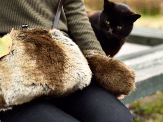 たぬきを連れ歩いてる!? 公園の猫さんも思わず「?」となった鞄がカワイイ!