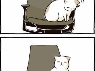 降りたいの?降りたくないの?椅子を陣取る猫ちゃんの漫画に癒される