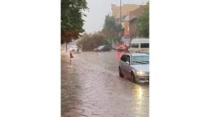 Торнадо и порой повали дървета на пътя Пловдив-Пазарджик