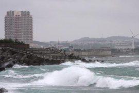 """El programa de pruebas denominado """"Proyect Seal"""" perseguía desarrollar tenía como objetivo destruir instalaciones militares en la costa de Japón."""