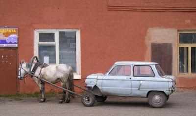 autos chistosos caballo