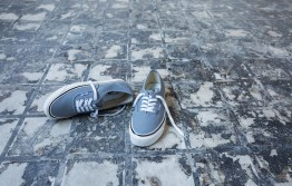 sp17_classics_vn0a38enmr6_authentic44dx-anaheimfactory-lightgrey_elevated