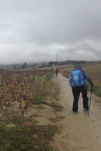 Pilgrim carrying backpack on Camino de Santiago.
