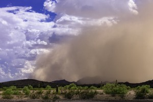 Leading edge of dust storm in the Arizona desert