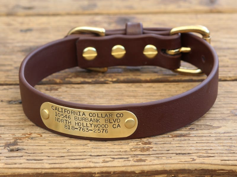 MUDPUPPY Nameplate Waterproof Collar CALIFORNIA COLLAR CO