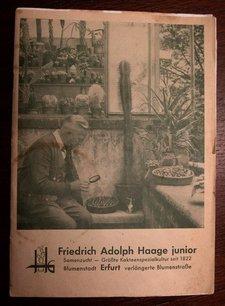 katalog 1955 10