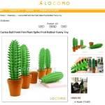 Kaktus-Stift - im Topf - sanft bedornt