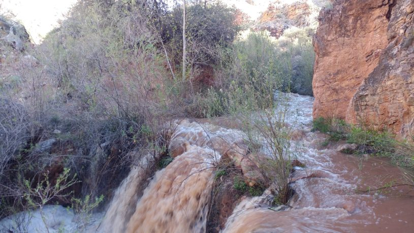 Grand Canyon Stream Overflow