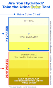 US Army Hydration Guide