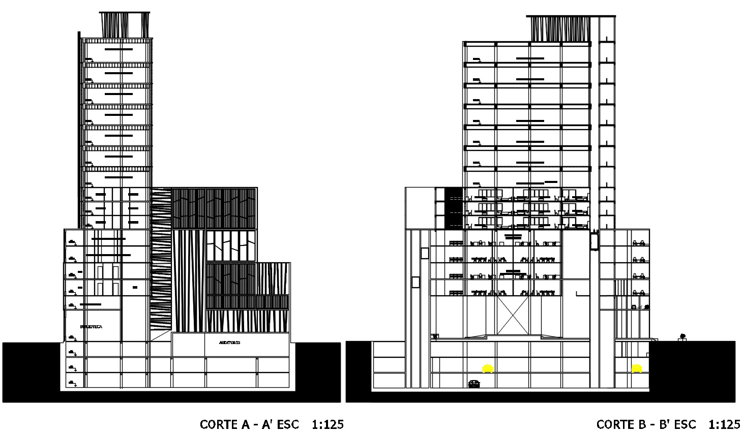 Architecture Corporate Building Section Drawing Autocad