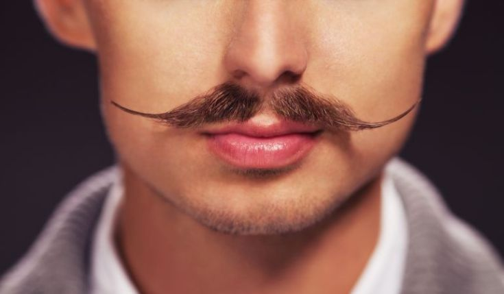 Resultado de imagen de bigote cuidado